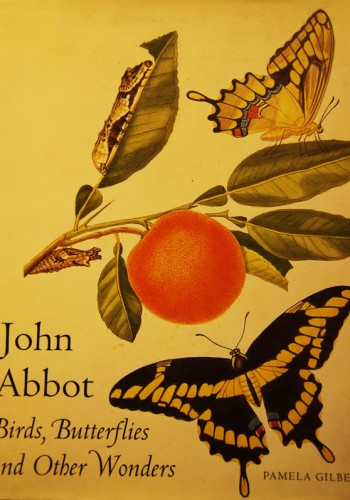 John Abbot: Birds, Butterflies and other wonders by Pamela Gilbert