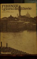 Firenze:I giorni del diluvio